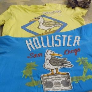 Hollister Tees Pelican Graphic 2 Tees XL